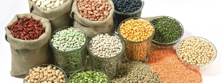 Top 10 surse de proteine vegetale